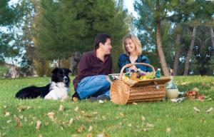 Hetties picnicking
